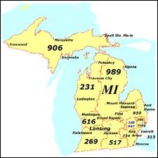 dating companies in michigan area code